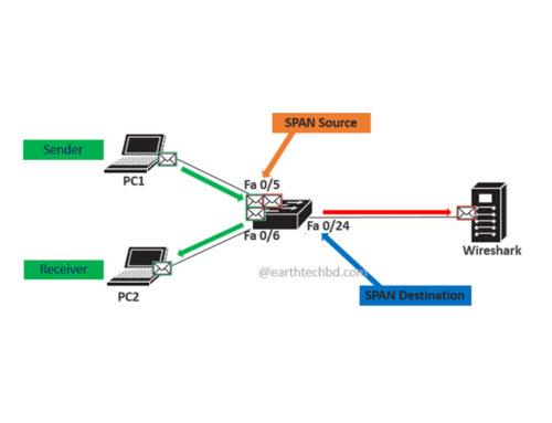 Switch Port Analyzer (SPAN)